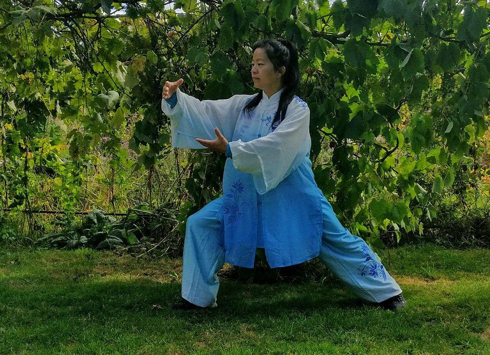 Aileen Hamdan. Tai Chi Chen Style Teacher