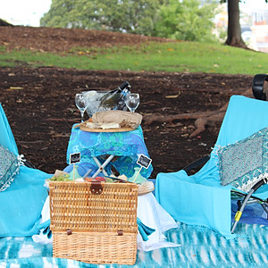 Renewal of Vows Picnic Surprise