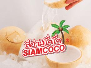 Siam Coconut