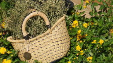small-basket-with-leather-handles
