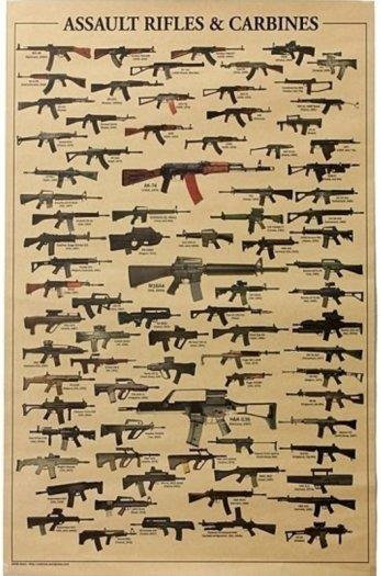 Assault Rifle and Carbines Poster