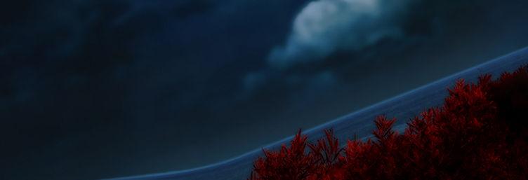 Night-sea-journey_SOCIAL-IMG.jpg