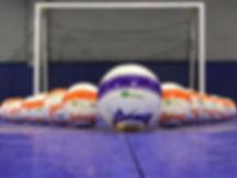Ginga Sports.jpg