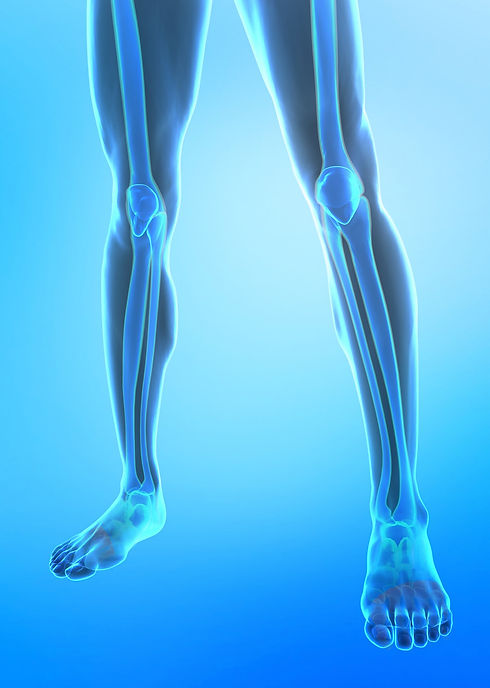 Xray image leg length web.jpg