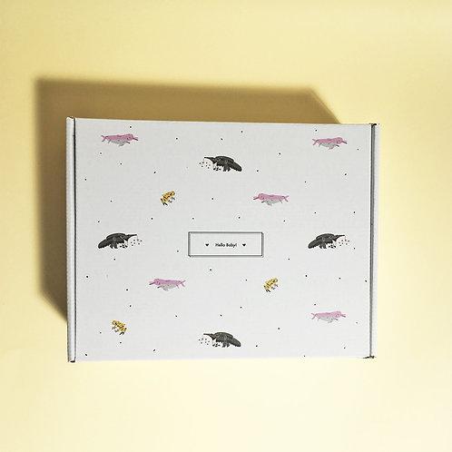 🎁 Gift Box