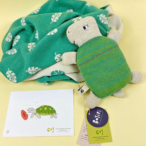 Coy & Blanket Set