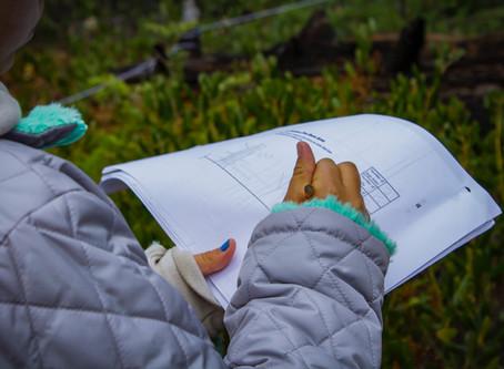 Backyard Field Guide