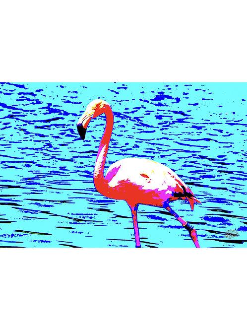 Flamingooo 2