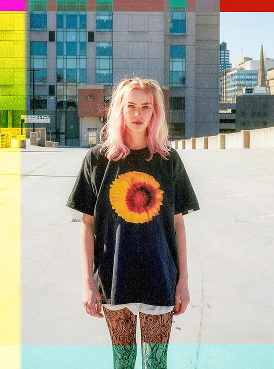 black sunflower.jpg