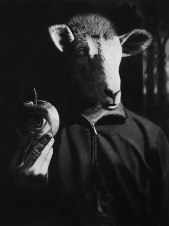 blindes Schaf