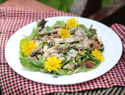 Steak Salad with Balsamic Blue Cheese Dressing and Mix Dandelion Greens