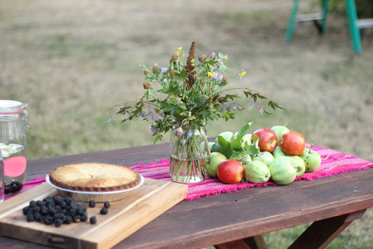 Harvest Time & Mixed Berries Pie Recipe