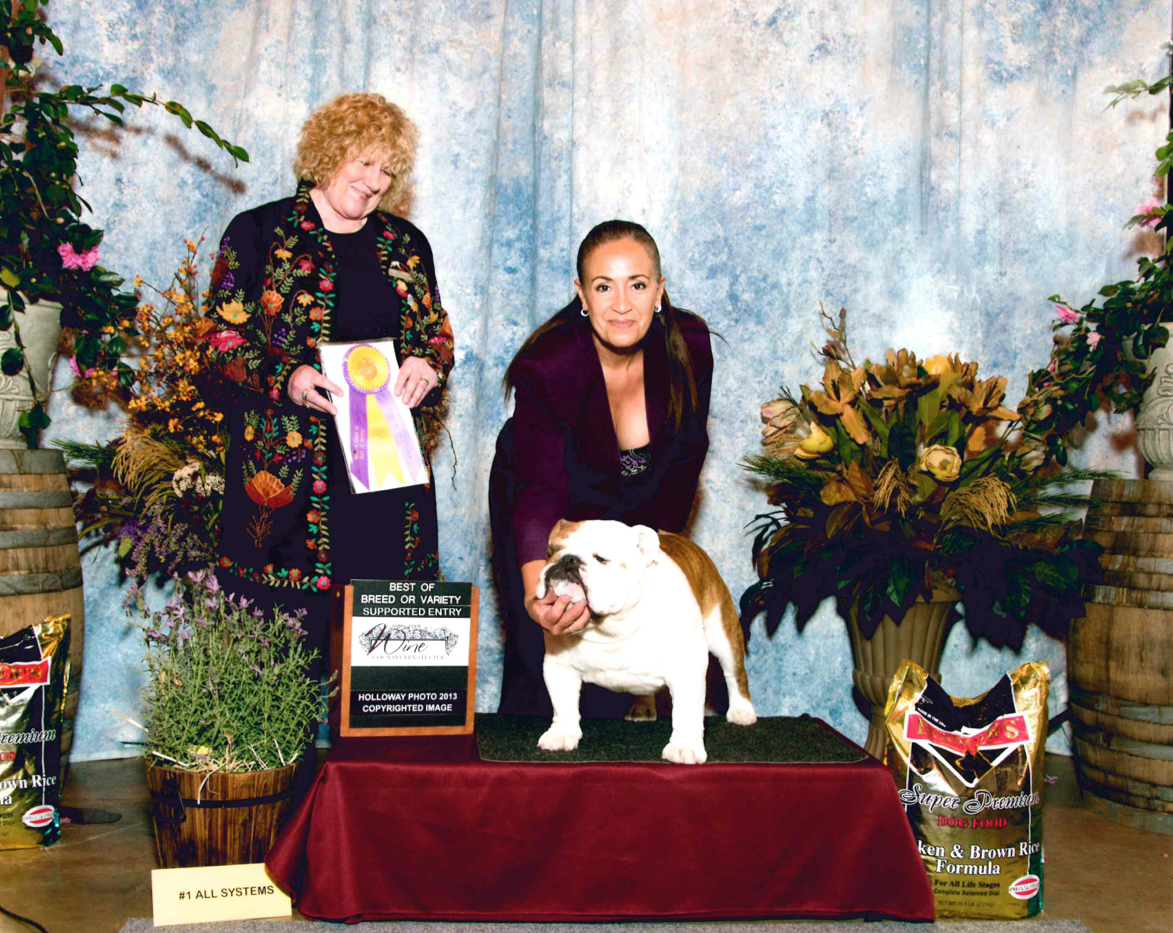 Herman Best of Breed Karan Kilgus :)