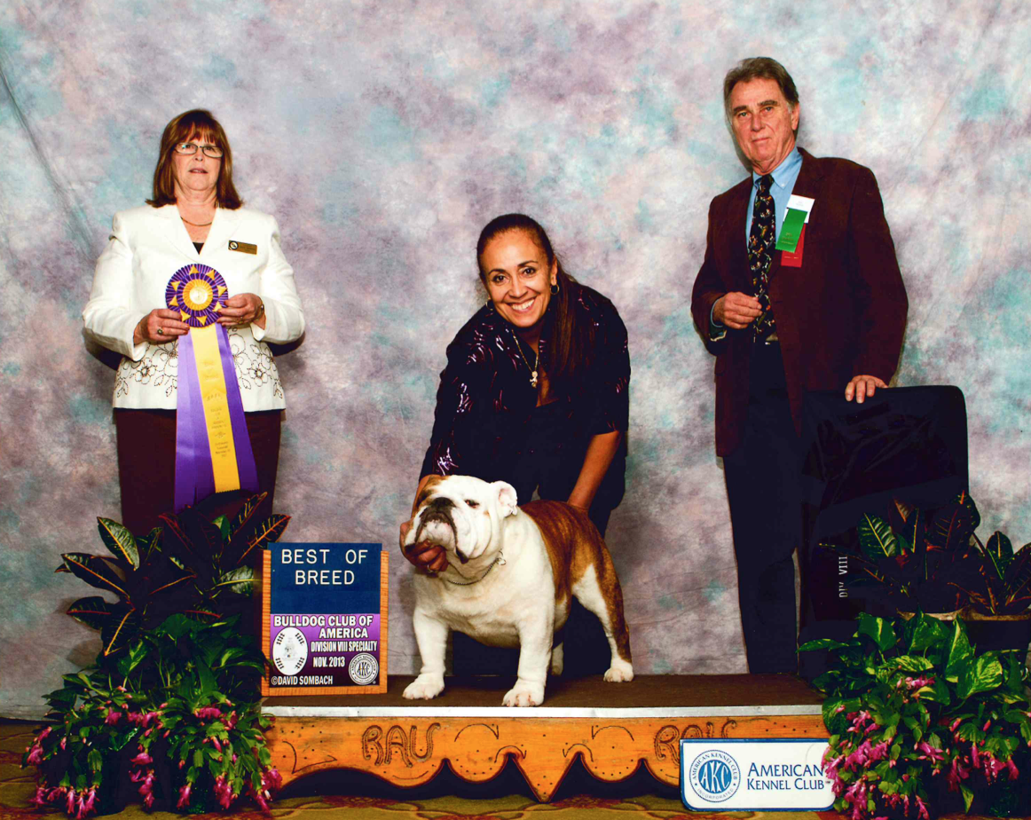 Herman Best of Breed Nationals Week!