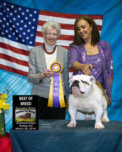 Dexter  Best of Breed with D. Prager