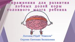 Развитие лобных долей мозга ребенка