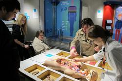 Экскурсия в Музей человека