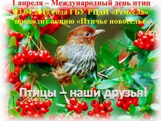 """Акция """"Птичье новоселье"""""""