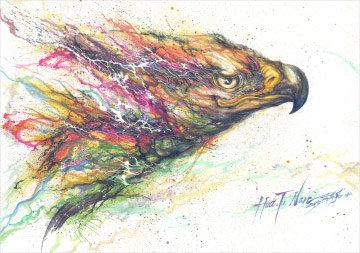 "HUA TUNAN ""The eagle is free, colourful and brave."