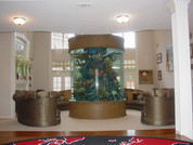 Aquariums_3.JPG