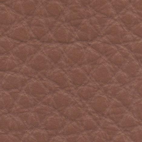 6008 siena