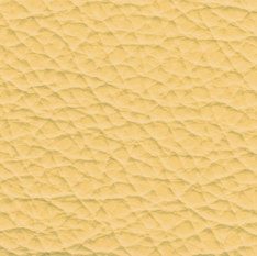 29120 amber