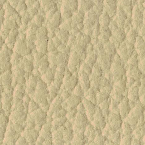 431 desert