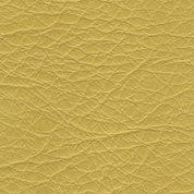 giallo sole.jpg