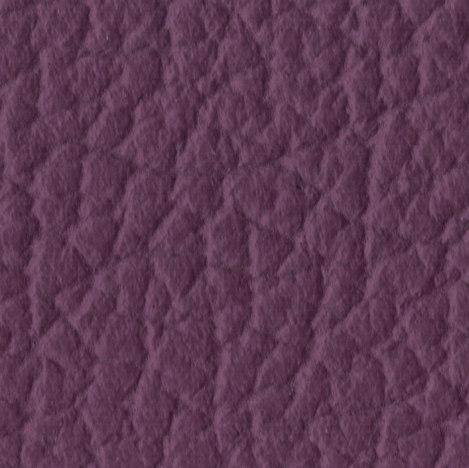 451 purple