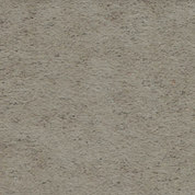 taupe 3809
