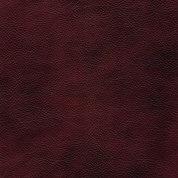 scarlet two-tone