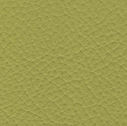 69200 pistachio