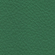 green ray.jpg