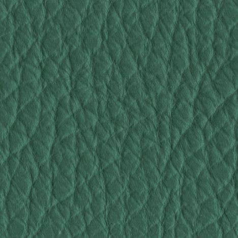 261 cedar green
