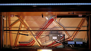 Piano Life Saver in an upright piano