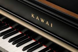 Digital Pianos - Determinants of Quality & Price (With Reference to Kawai)