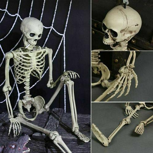 Full Life Size Human Skeleton Decoration
