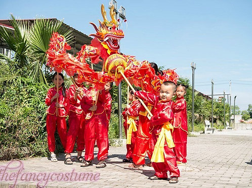 3.1M Youth Silk Chinese Festival Dragon Dance Costume