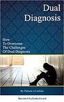 BobCat Studios Voiceover- Dual Diagnosis Graphic