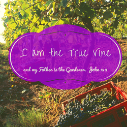True Vine.png