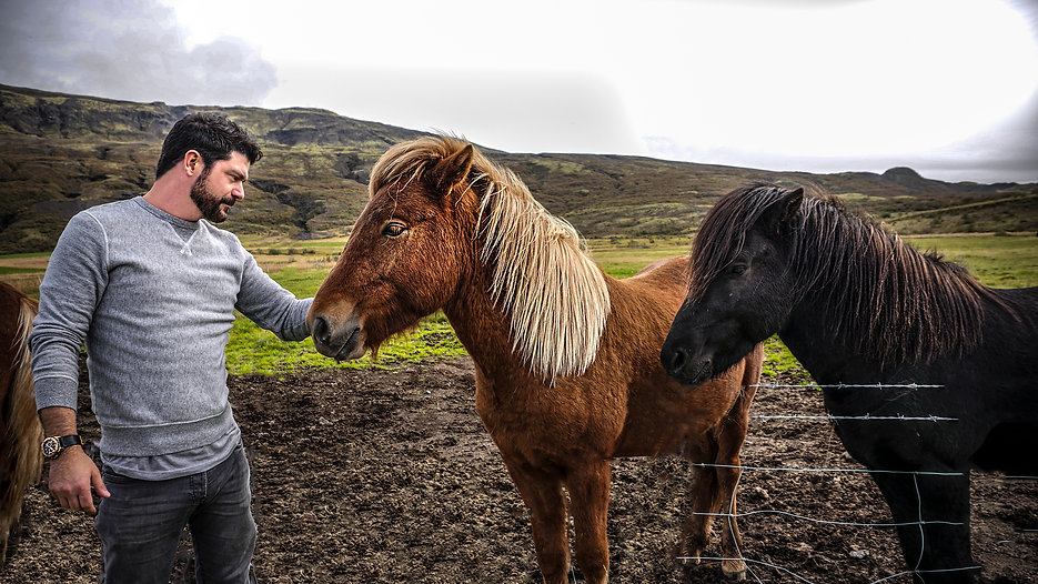John T. Woods in Iceland with a horse