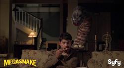 John T. Woods in 'Megasnake'