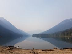 Gazing at the lake