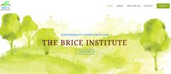 THE BRICE INSTITUTE