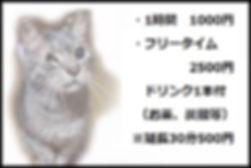 新料金プラン.jpg