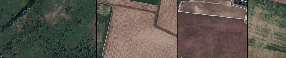 hand painted ground textures.png