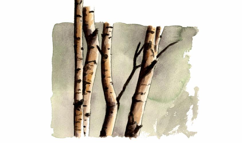 Simpliciter  I, Acquerello su carta, 17x21 cm, 2012