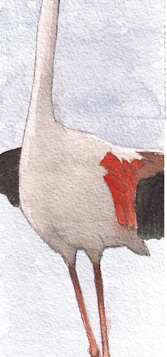 Fenicottero verticale, Acquerello su carta, 5x25 cm, 2009