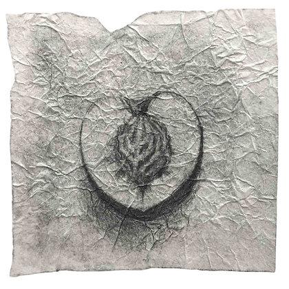 Ksenija Koloskova - Half a peach