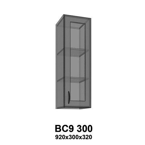 Модуль навесной со стеклом BС9 300